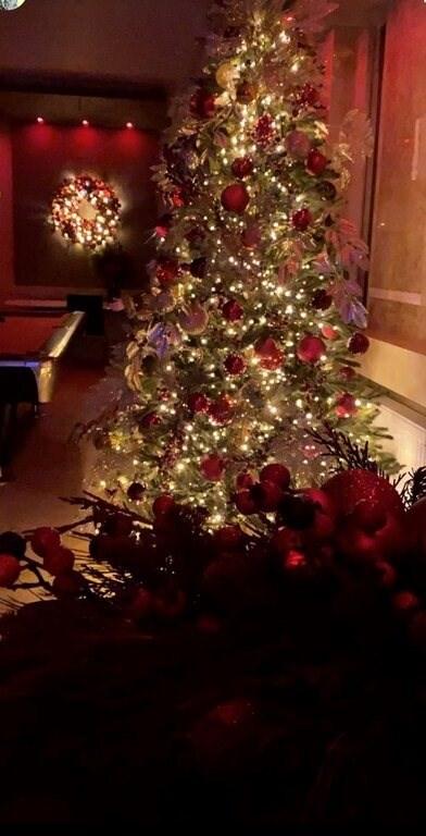 It's Christmas Time | Αυτά είναι τα Χριστουγεννιάτικα Δέντρα των σπιτιών τους