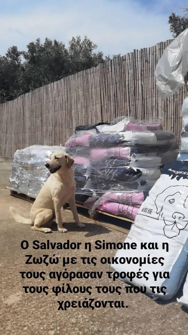 Λεωνίδας Κουτσόπουλος | Κίνηση αγάπης για τα πυρόπληκτα ζώα