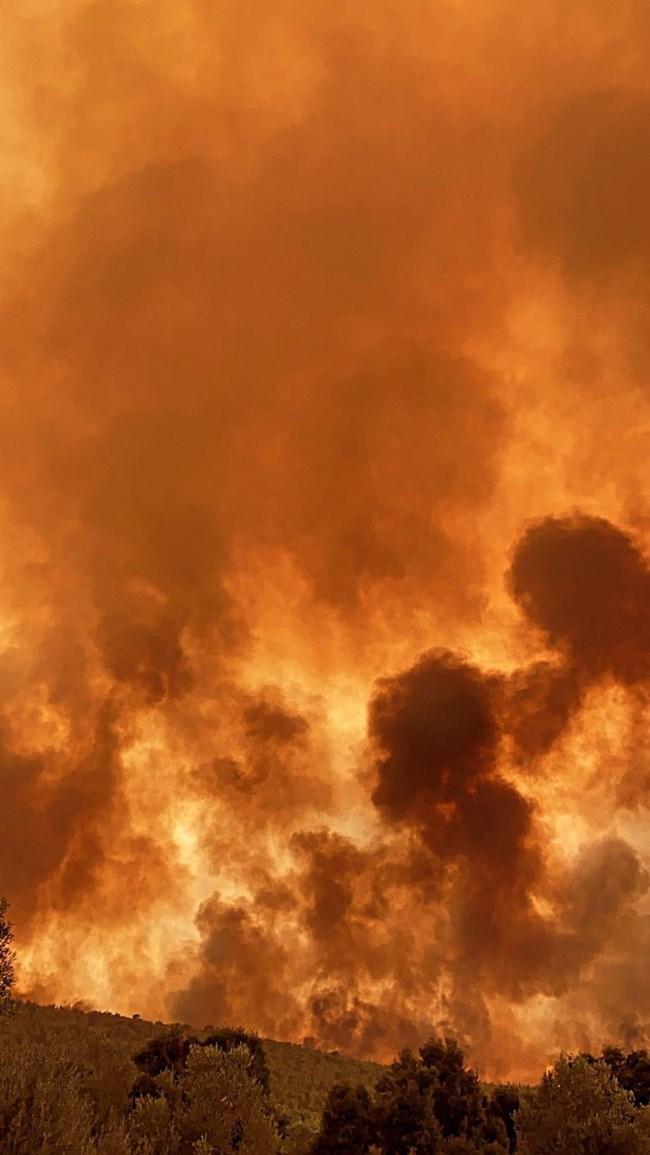 Σάββας Πούμπουρας Φωτιά Βίλια
