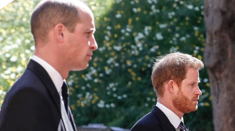 Πρίγκιπας William & Πρίγκιπας Harry