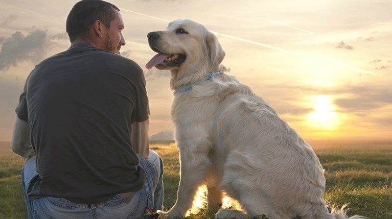 Γιατί ένας σκύλος είναι το καλύτερο δώρο που μπορείς να κάνεις στον εαυτό σου